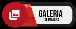 Moto V-STROM 650 XT Galeria