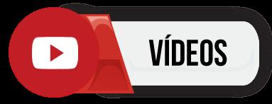 Vídeos da V-Strom 650 XT nova